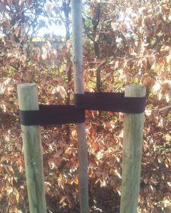 Boompaal, boomband en spijker
